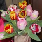 Тюльпаны пеструшки.